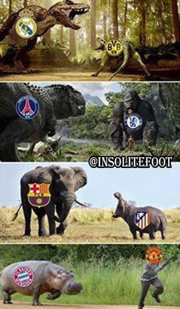 Le tirage au sort de la Ligue des champions : À chacun sa chance