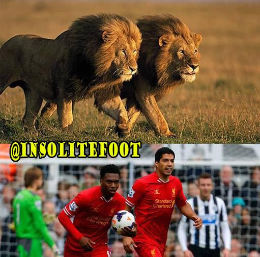Liverpool : Sturridge-Suarez, le duo d'enfer!