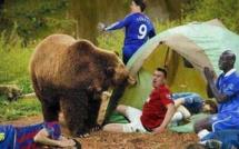 Si Vous Voyez Ce Que Je Veux Dire : Drogba, Torres, Busquets  Luiz et Balotelli !!!