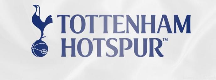 Mercato : un international Français priorité de Tottenham