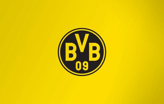 Dortmund - Mercato : Christian Pulisic rejoint Chelsea !