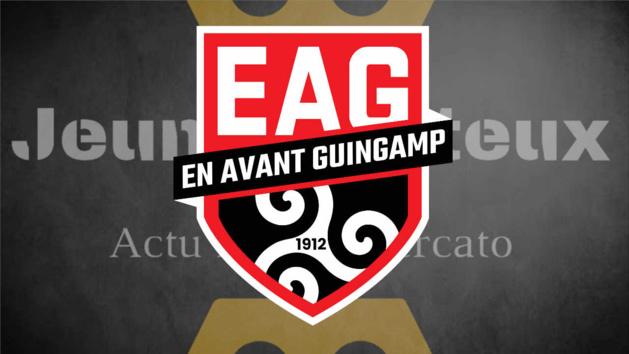 Guingamp : Bertrand Desplat démissionne de son poste de président de l'EAG
