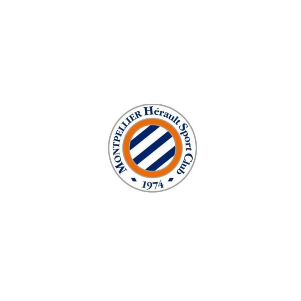 MHSC : Laurent Nicollin tacle les dirigeants de Dijon