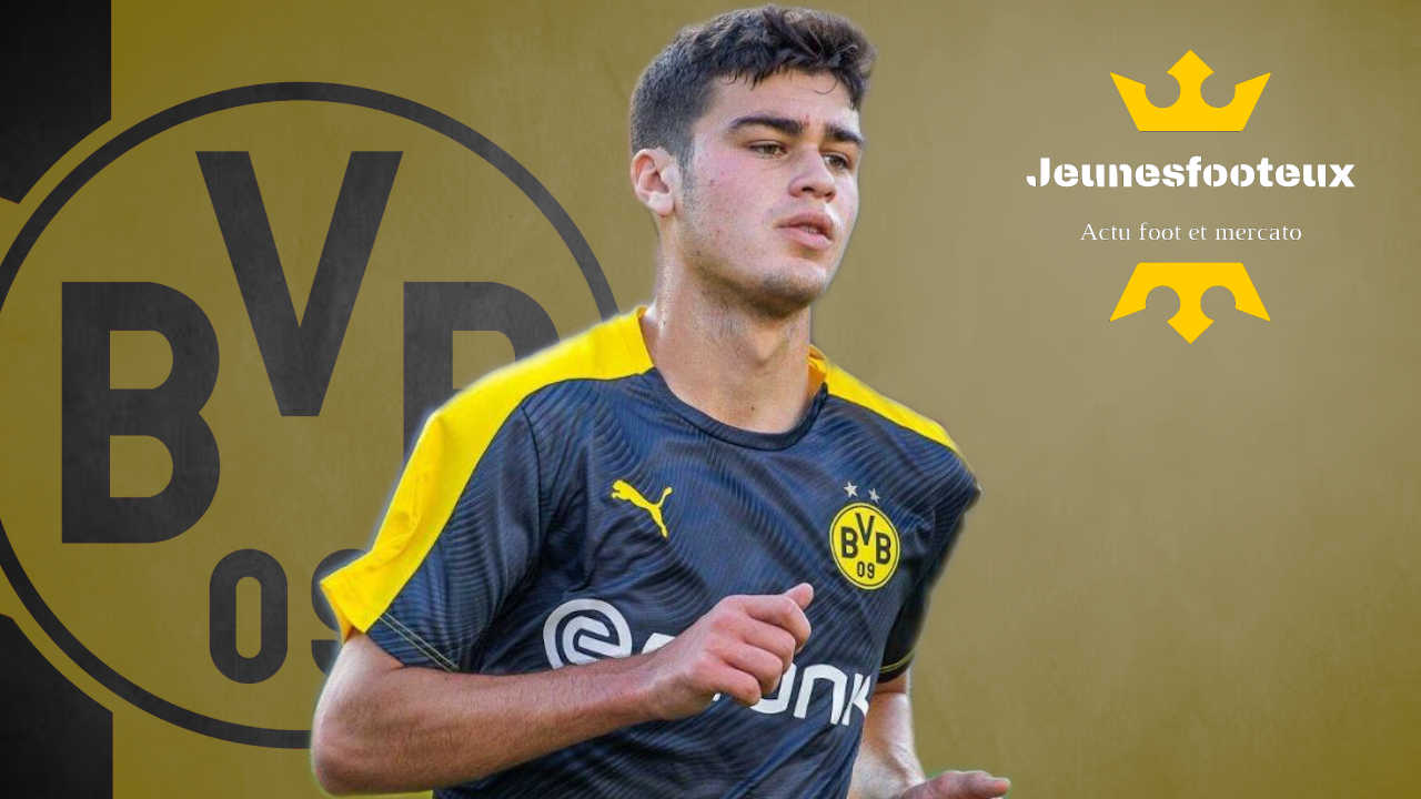 Borussia Dortmund : Giovanni Reyna