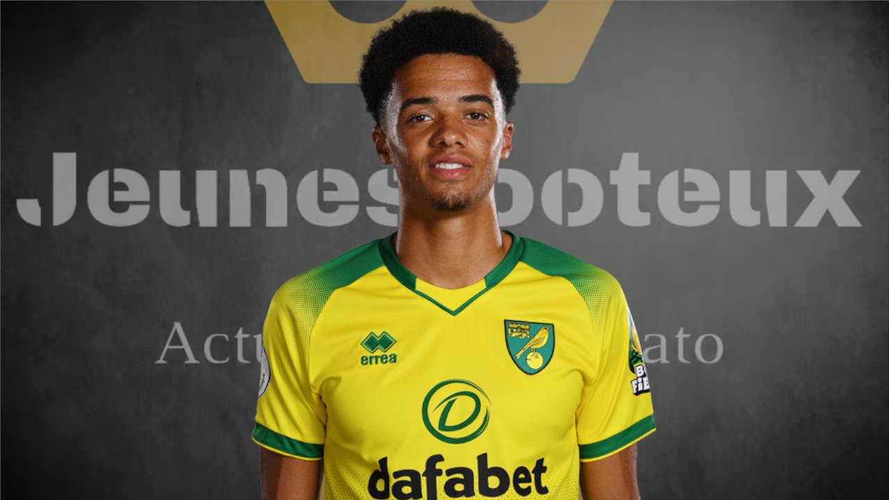 Jamal Lewis, arrière latéral gauche de Norwich City