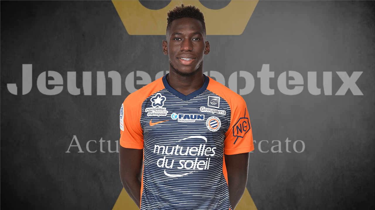 MHSC : Junior Sambia (Montpellier HSC).
