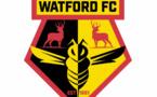 Watford : Adrian Mariappa surpris d'être positif au Covid-19