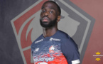 LOSC - Mercato : Newcastle et Tottenham sur un attaquant des Dogues ?