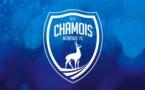 Niort / Ligue 2 : Jacob et Koyalipou, coup dur pour les Chamois Niortais !