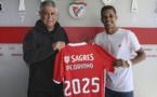 Benfica : 18M€, Pedrinho signe au Shakhtar Donetsk !