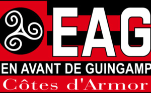 Guingamp : Desplat envoie un gros tacle à Aulas