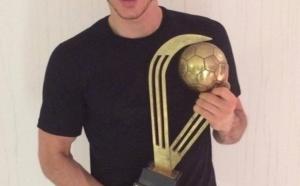 Lewandowski : meilleur joueur polonais 2013 !