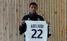 Angers repousse une offre du LOSC pour Jeff Reine-Adelaïde