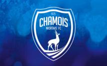 Niort exclu de la Coupe de France 2021/2022, grosse amende pour les Chamois !