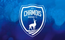Niort - Ligue 2 : Pape Ibnou Ba, un avenir en Ligue 1 ?