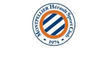 MHSC : Samy Benchamma (Montpellier HSC) rejoint les Chamois Niortais !