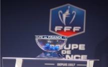 PSG-ASSE et Auxerre-Guingamp en demi-finale de la coupe de France