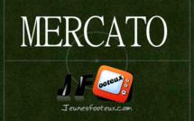 Leicester : le succésseur de N'Golo Kanté déniché en Ligue 1 ?